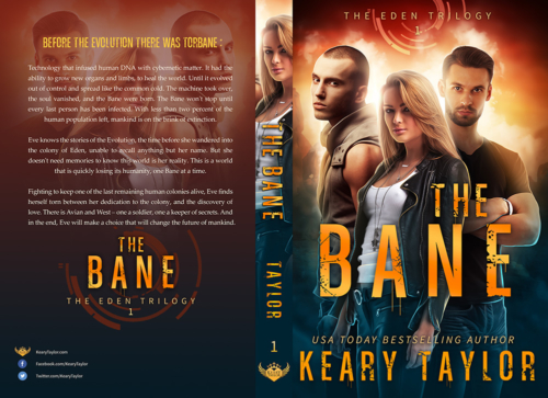 urban fantasy paperback book cover